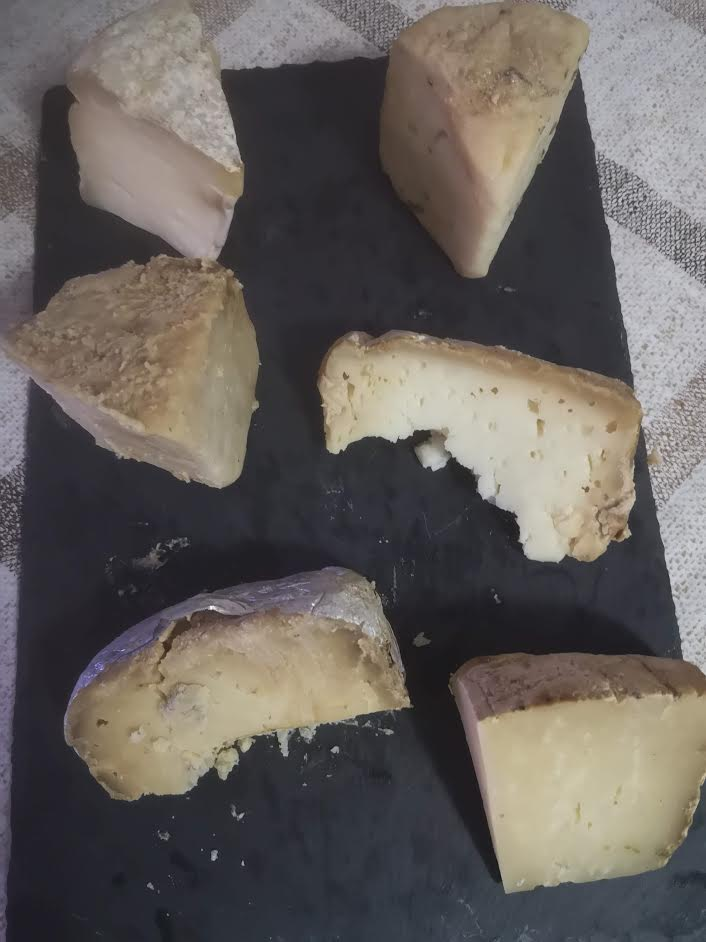 Cata de quesos artesanos